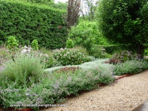 Colour and texture contrast combine to create a warm, lush feel to a water-wise garden